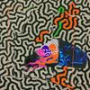 Animal Collective Tangerine Reef Album