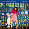 Eleanor Friedberger Rebound Album