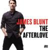 James Blunt The Afterlove Album