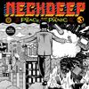 Neck Deep The Peace and the Panic Album