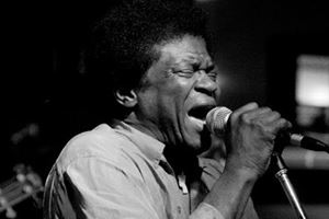 Charles Bradley Can't Fight the Feeling Lyrics