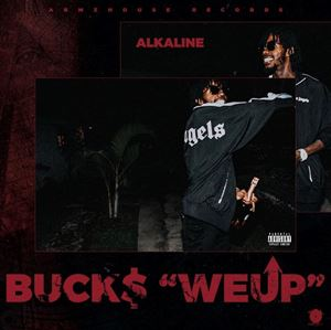 Alkaline We Up Lyrics