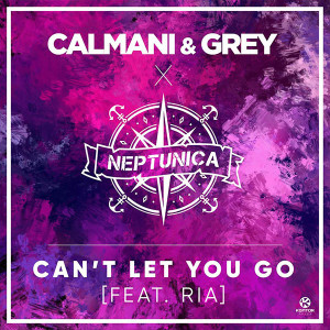 Calmani & Grey Can't Let You Go Lyrics
