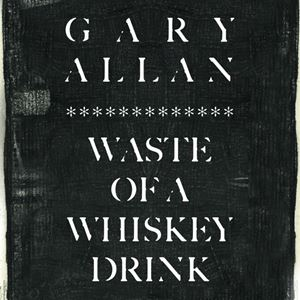 Gary Allan Waste of a Whiskey Drink Lyrics