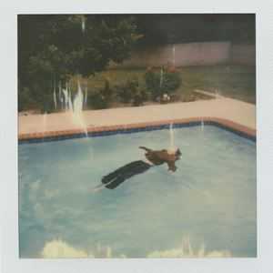 girl in red Dead Girl In the Pool. Lyrics