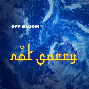 Off Bloom Not Sorry Songtext