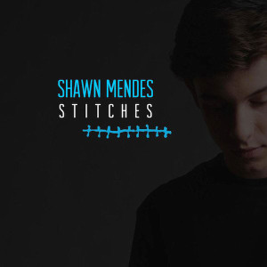 Shawn Mendes Stitches Songtext