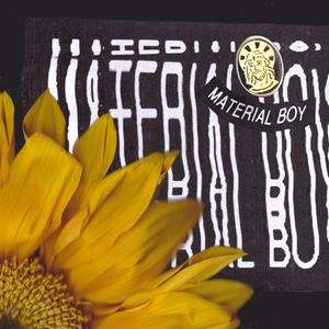 Sir Sly Material Boy Lyrics