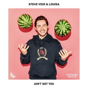 Steve Void Ain't Got You Lyrics