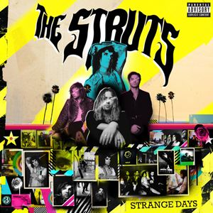 The Struts Am I Talking To The Champagne (Or Talking To You) Songtext