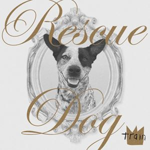 Train Rescue Dog Lyrics
